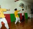 SiGung Wong Nim Yi Seminar, Mai Gei Wong Wing Chun Italia, Caserta (2009)