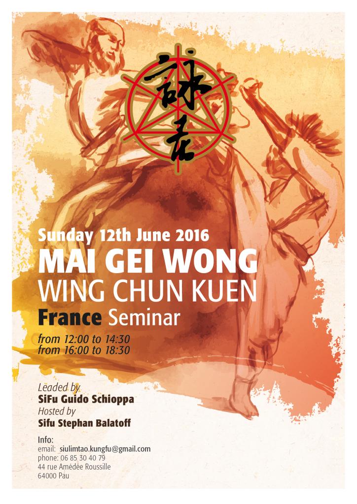 Mai Gei Wong Seminar in France, SiFu Guido Schioppa